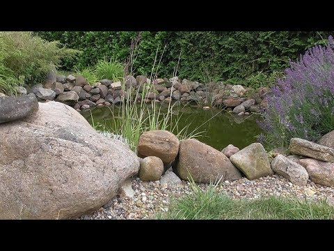 Gartenteich selbst anlegen – Darauf muss geachtet werden / Teich selber bauen – DIY Tipps