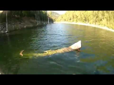 рыбалка на джойском заливе