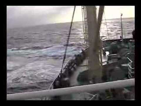 Sea Shepherd Attacks Japanese Whaling fleet.  Feb 09, 2007/A