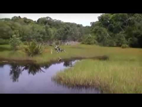 Gabon Travel Video