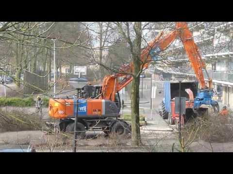 Wood Chipper and Tree Cutting