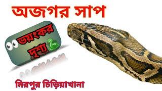 Mirpur Zoo, Snake Live