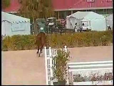 Renaissance at West Palm Beach Horse Show Video