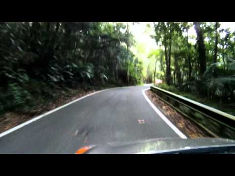 Video #3 El Yunque National Forest - Puerto Rico (Rain Forest)