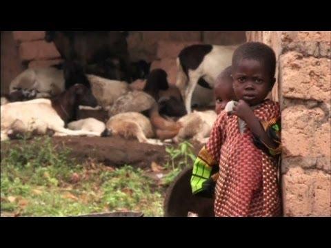 aids orphans africa essay contest