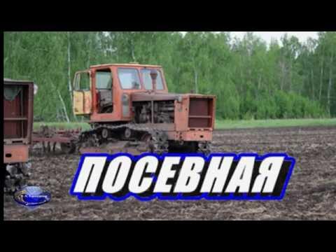 Трактор Т- 4  Алтай, на посевной.
