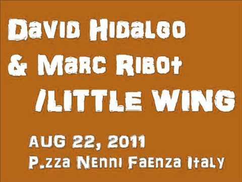 David Hidalgo&Marc Ribot / LITTLE WING