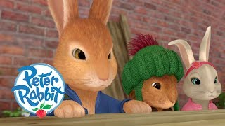 Peter Rabbit - A Quick Escape | Cartoons for Kids