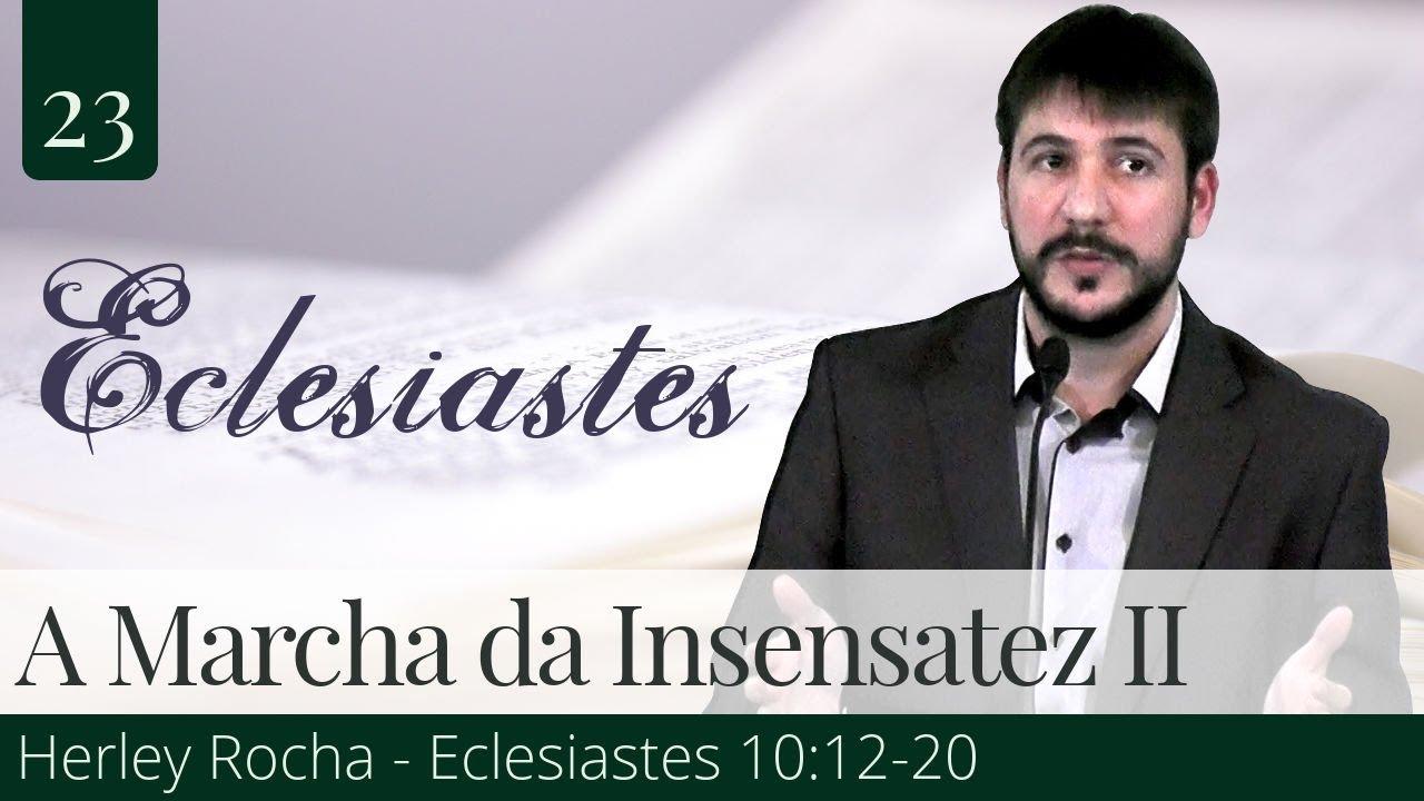 23. A Marcha da Insensatez II - Herley Rocha