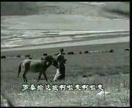Tibetan Song Tibet Music  Arola kahmpa Tsegoen-2 Music Videos