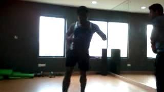 Nisar Kick Boxing Padding