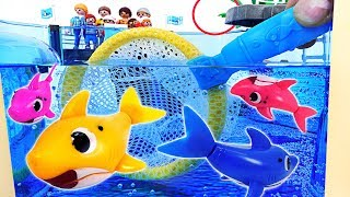 Baby Shark Family is in Danger! Pinkfong! Rescue the Baby Shark with a Landing Net! #PinkyPopTOY
