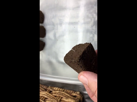 ROOT RIOT cubes for SEEDS