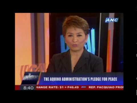 Sec. Teresita 'Ging' Deles on THE RUNDOWN July 1, 2010 (Part 2 of 3)