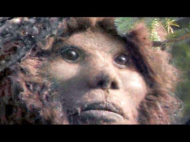 Origins Of Todd Standing's Sylvanic Bigfoot