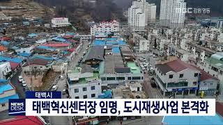 투/태백 혁신센터장 임명, 도시재생사업 본격화
