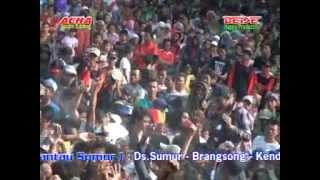 PANTURA Andeca andeci Trio ABG Live in sumur brangsong