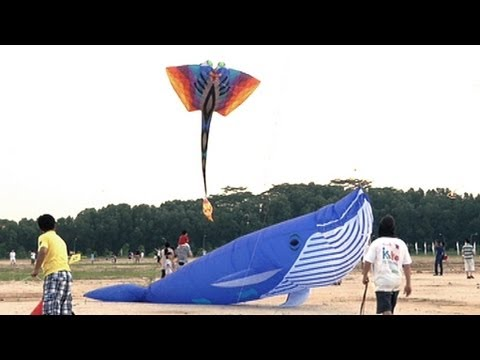 Kite Festival Singapore - NTUC Income Kite Festival Singapore...