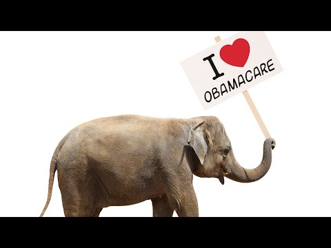 Republicans Have A New Love: Obamacare!