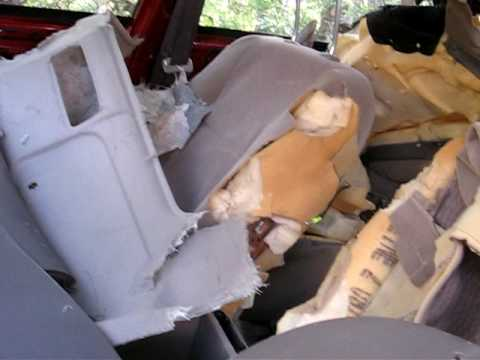 Bear steals car and trashes it.