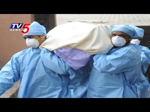 Beware, Swine Flu on The Rise in AP : TV5 News