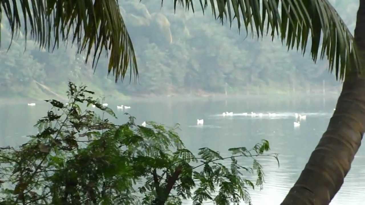 Nature Park Taratala Images