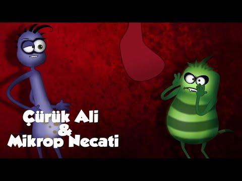Süt Diş | Çürük Ali Ve Mikrop Necati | Grafi2000