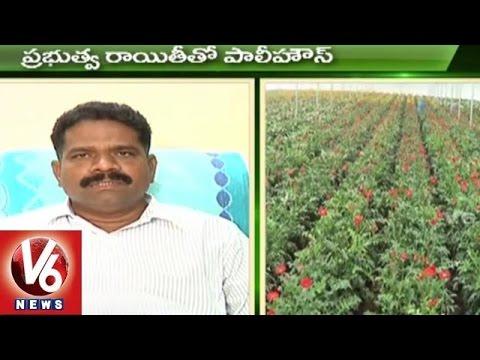 Sagubadi | Paddy Crop Farming Techniques | Agriculture Crop - V6 News (03-07-2015)