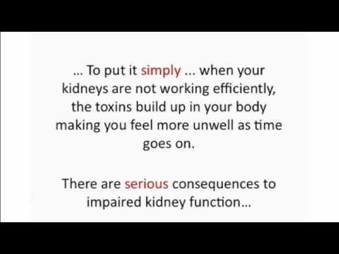 Kidney Diet - Reversing Chronic Kidney Disease with Kidney Diet
