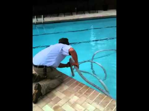 Como limpiar una piscina por el instructor jv youtube for Como se aspira una piscina