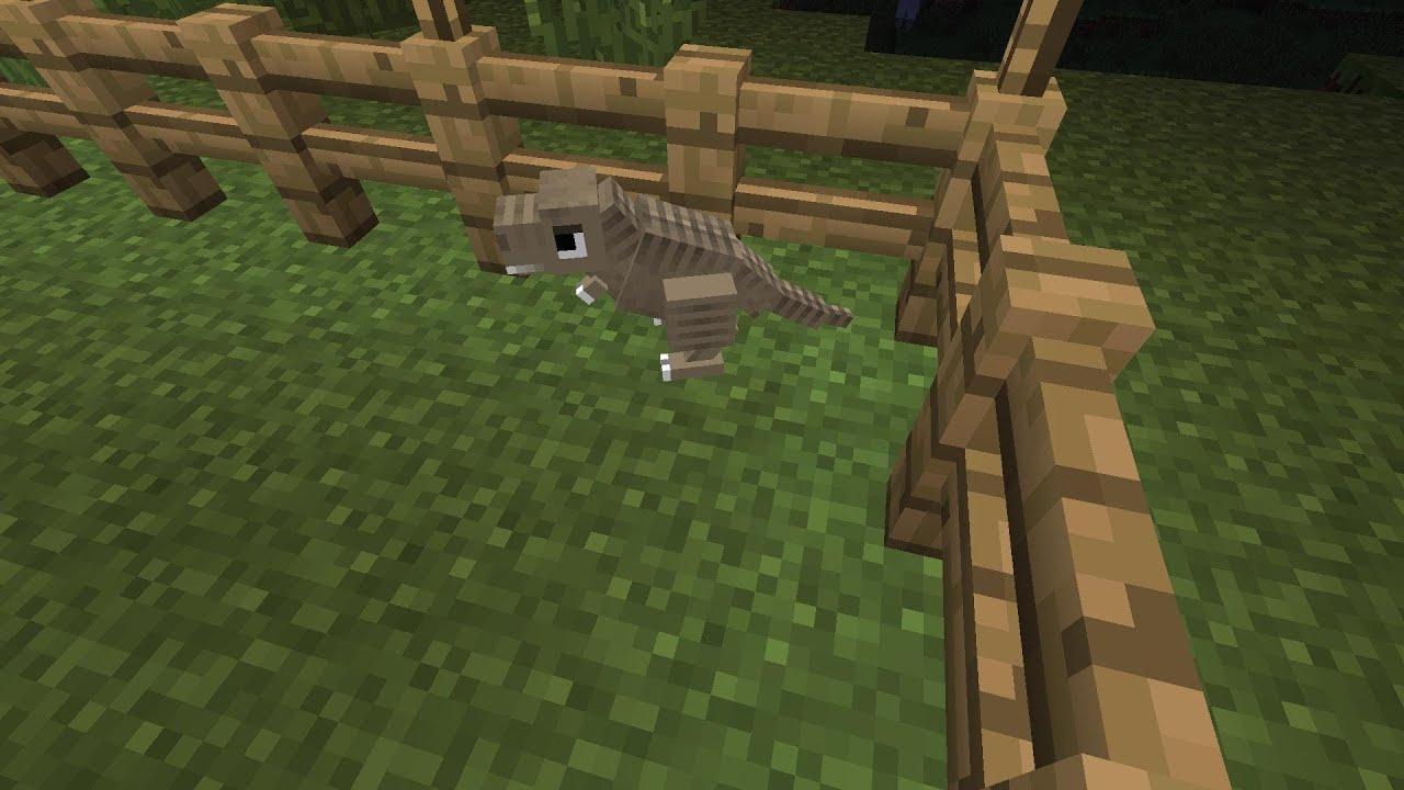 First Dinosaur Hatchling