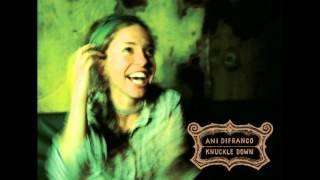 Watch Ani Difranco Seeing Eye Dog video