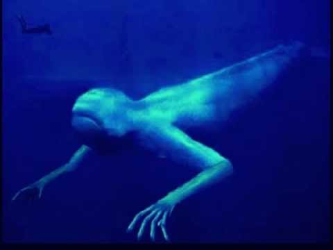 Zíclope - The Plankton Corpse (A tale of the forgotten sea monster)