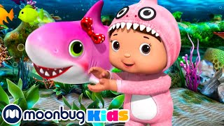 Learning Nursery Rhymes for Kids | Baby Shark Song | Little Baby Bum
