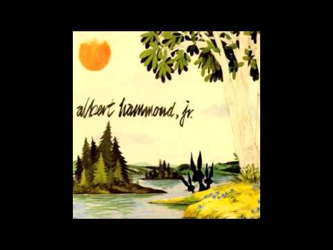 Albert Hammond Jr - Well All Right