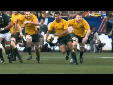 Wallabies Rugby [Tribute]