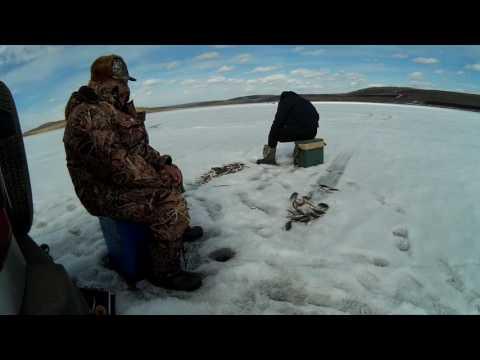 подледная рыбалка на ангаре видео