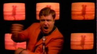 Watch Talking Heads Wild Wild Life video
