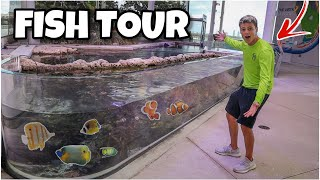 MASSIVE REEF AQUARIUM TOUR!! *FEEDING*