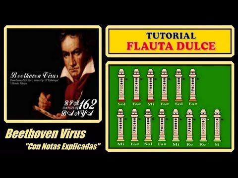 Beethoven Virus en Flauta