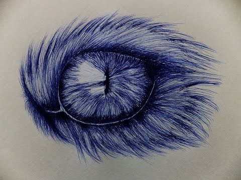 Ballpoint Pen Eye Drawing Cat Eye Drawing With Ballpoint