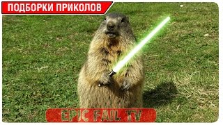 Подборка приколов за Апрель 2016 (+18) #102 A selection of jokes for April 2016