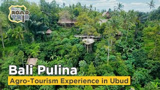 Bali Pulina agro tourism attraction in Ubud, Indonesia