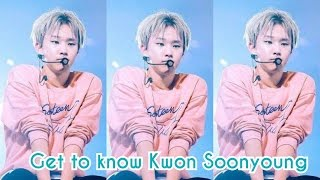 SEVENTEEN - HOSHI FACTS    GET TO KNOW KWON SOONYOUNG