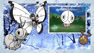 (ISHC#2 LIVE BQ#2) Pokemon Y: Shiny Scatterbug after 4,681 RE's