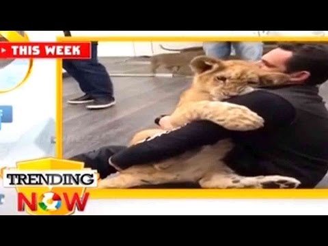 Trending Now - Trending Videos In The World | May 09, 2016