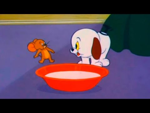 Tom and Jerry - Episode 80 - Puppy Tale (1954) thumbnail