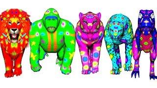 wild animals finger family song for kids   nursery rhymes,children,toddlers,dinosaur,NASH TOON Tv