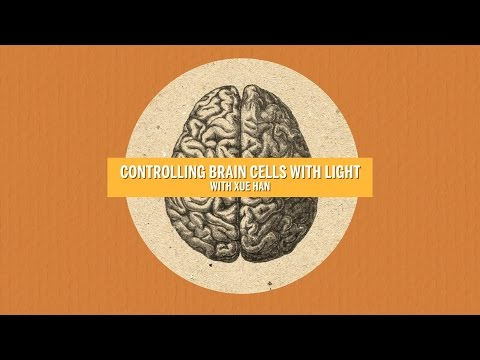 Controlling Brain Cells with Light