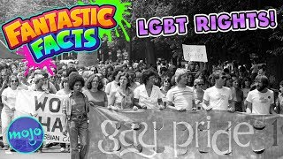 Learn About LGBT RIGHTS! - Mini Fantastic Facts